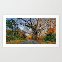 Hairy Man Road - Brushy Creek- Round Rock, Texas Art Print