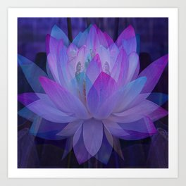 The Lotus in blue... Art Print