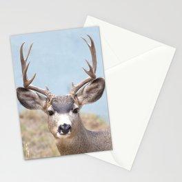 Watercolor Deer, Mule 15, Estes Park, Colorado, Teeth-gritter Stationery Cards