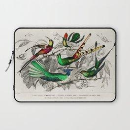 Bar-Tailed Humming Bird, Stoke Humming Bird, Underwood's Humming Bird, Gould's Humming Bird, and Topaz Throated Humming Bird by Oliver Goldsmith Laptop Sleeve