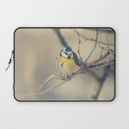 Blue and yellow tit Laptop Sleeve