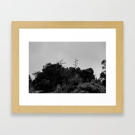 Raven sits on top of Mountain - Big Bend Framed Art Print