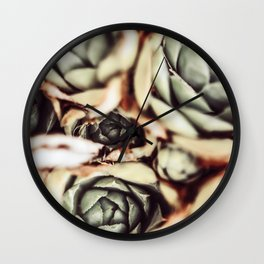 DARKSIDE OF SUCCULENTS IXb Wall Clock