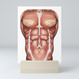 Chest abs six pack body muscles halloween costume Mini Art Print