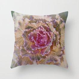 Ornamental Kale 9346 Throw Pillow