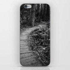 The Pathway iPhone & iPod Skin