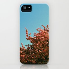 Unitl next year, Spring iPhone Case