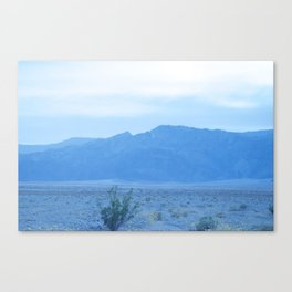 Death Valley Spring 2016 Surreal Whitewash with Plant Canvas Print