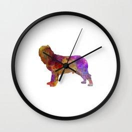Napolitan Mastiff in watercolor Wall Clock