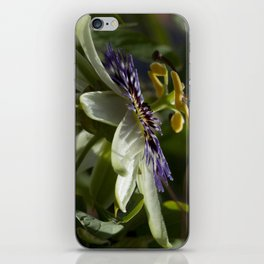 Passionflower bloom iPhone Skin