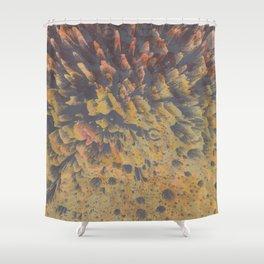 FLEW / PATTERN SERIES 008 Shower Curtain