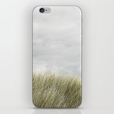 Beach grass and clouds iPhone & iPod Skin