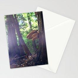 Twilight Fungus Stationery Cards