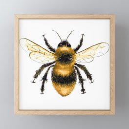 Bumble Bee Framed Mini Art Print