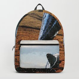 Dolphins & Valleys Backpack