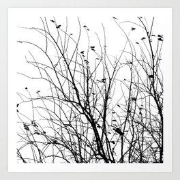 Black white tree branch bird nature pattern Art Print