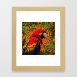 RED JUNGLE MACAW PATTERN ABSTRACT Framed Art Print