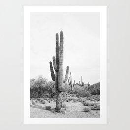 Desert Cactus BW Art Print