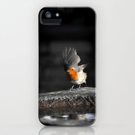 The Last Courtier iPhone Case