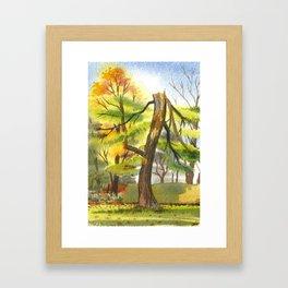 Headless Pine Framed Art Print