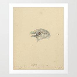 Bird  by Pieter van Oort 6 Art Print