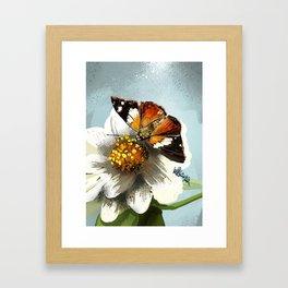 Butterfly on flower 12 Framed Art Print