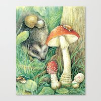 mushrooms Canvas Prints featuring Mushrooms by Natalie Berman
