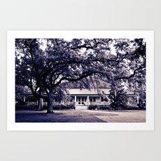 Audubon Clubhouse II Art Print