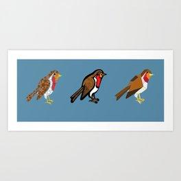 3 Robins Art Print