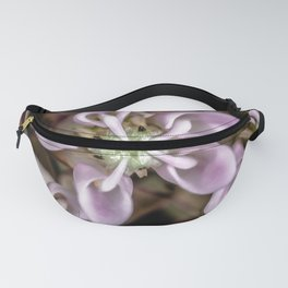 Milkweed flower close up Fanny Pack