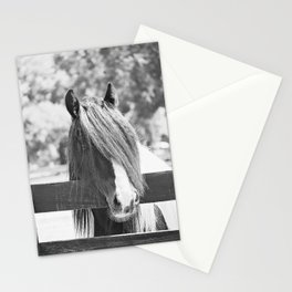 I am Watching You in BW Stationery Cards