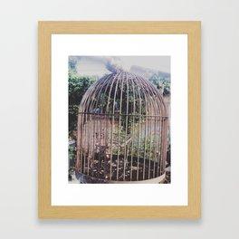 Dead chickens Framed Art Print
