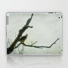Penetrating Gaze Laptop & iPad Skin