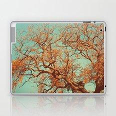 Orange. Laptop & iPad Skin