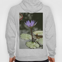 Beauty At The Pond Hoody