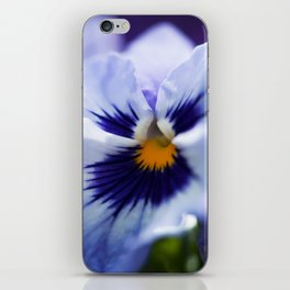 Blue Pansy iPhone Skin