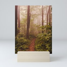 Smoky Mountain Forest Adventure II - National Park Nature Photography Mini Art Print