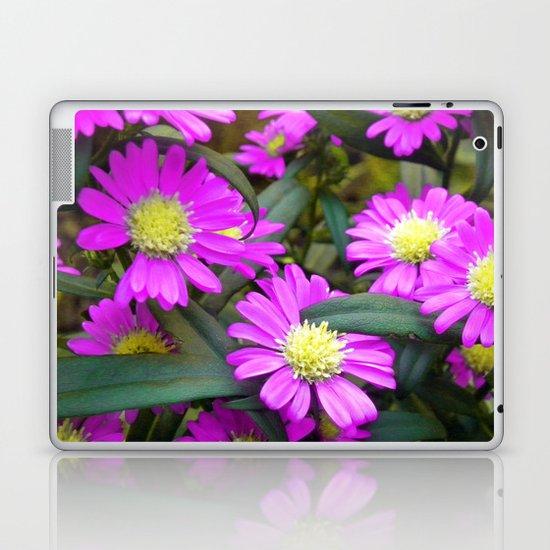 Fuchsia Daisy Flowers Laptop & iPad Skin