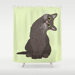 Wanderlust Cat Shower Curtain