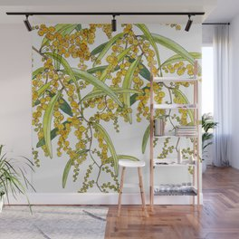 Australian Wattle Flower, Illustration Wall Mural