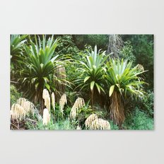 'Dragon Tree' Forest Canvas Print