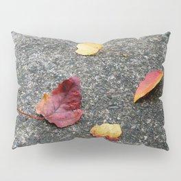 NATURE ART 4 Pillow Sham