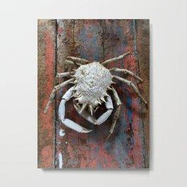 A Little Crabby Metal Print