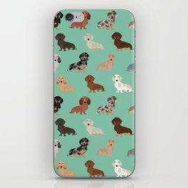 Dachshund dog breed pet pattern doxie coats dapple merle red black and tan iPhone Skin