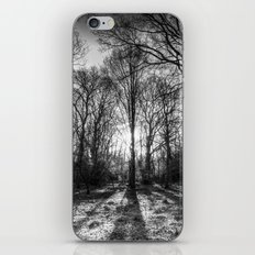 The Monochrome Sun Ray Forest iPhone & iPod Skin
