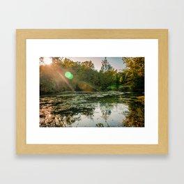 Bog Garden Framed Art Print