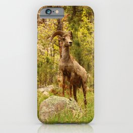 His Teritory iPhone Case