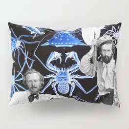 Haeckel's Cure for Arachnophobia Pillow Sham