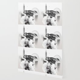 Schnauzer with Camera Wallpaper