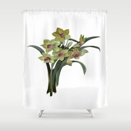 Lent Lily Isolated Shower Curtain